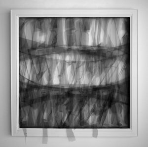 brian prugh's tulle